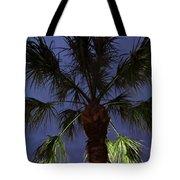 Night Sky Through The Palm Tote Bag