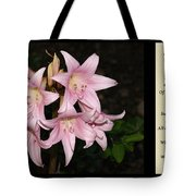 Nighttime Whisper With Poety Tote Bag
