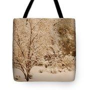 Nine Thirty Pm Tote Bag