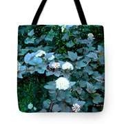 Ninebark Beauty Tote Bag