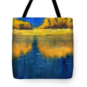 Nisqually Reflection Tote Bag by Nancy Merkle