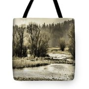Nisqually Tide Pools Tote Bag