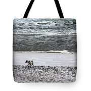 No Beginning    No End Tote Bag