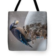 Blue Jay Finds A Peanut Tote Bag