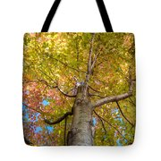 Through The Roof Tote Bag