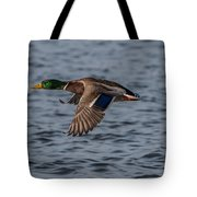 Mallard Flight Tote Bag