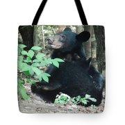 Bear - Cubs - Mother Nursing Tote Bag