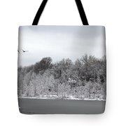 No Where To Land Tote Bag