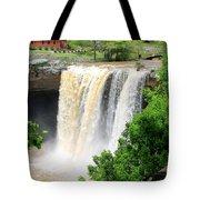 Noccalola Falls Tote Bag