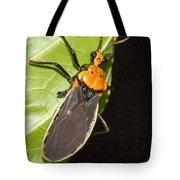 Nocturnal Bug Tote Bag