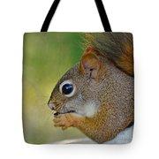 Nom Nom Squirrel  Tote Bag