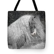 Nor Easter Tote Bag