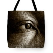 Nora On West Palace Tote Bag