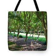 Norfolk Botanical Garden 3 Tote Bag