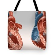 Normal And Diseased Hearts Tote Bag