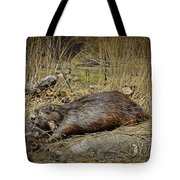 North American Beaver Tote Bag