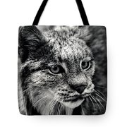North American Lynx In The Wild. Tote Bag