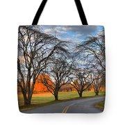 North Carolina Sloan Park Sunset Tote Bag