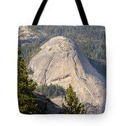 North Dome Tote Bag