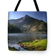 North Face Of Jughandle Mountain Tote Bag