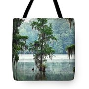 North Florida Cypress Swamp Tote Bag