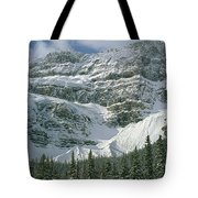 1m3536-north Side Of Crowfoot Mountain Tote Bag