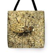 Northern Beach Tiger Beetle Marthas Tote Bag