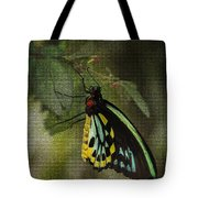 Northern Butterfly Tote Bag