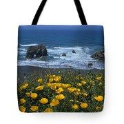 Northern California Coast Tote Bag