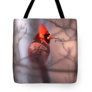 Northern Cardinal Dominent Male Tote Bag