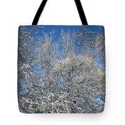 Northern Colors Tote Bag