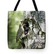 Northern Flicker Nest Tote Bag