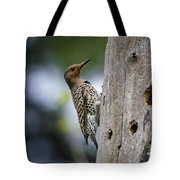 Northern Flicker Pictures 35 Tote Bag