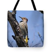Northern Flicker Pictures 8 Tote Bag