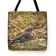 Northern Flicker Woodpecker Tote Bag