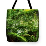 Northern Forest 3 Tote Bag
