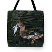 Northern Gannet Feeding Tote Bag