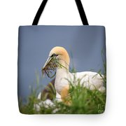 Northern Gannet Gathering Nesting Material Tote Bag