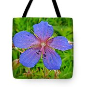 Northern Geranium In Jasper National Park-alberta  Tote Bag