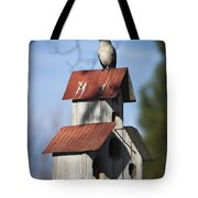 Northern Mockingbird Tote Bag