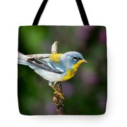 Northern Parula Warbler Tote Bag
