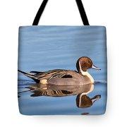Northern Pintail Drake Tote Bag
