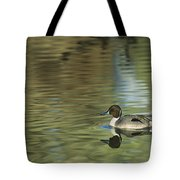 Northern Pintail In A Quiet Pond California Wildlife Tote Bag