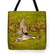 Northern Pintail In Flight Tote Bag