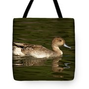 Northern Pintail Molting Tote Bag