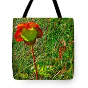 Northern Pitcher Plant In French Mountain Bog In Cape Breton Highlands-nova Scotia  Tote Bag