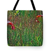 Northern Pitcher Plant In French Mountain Bog On Cape Breton Isl Tote Bag