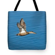 Northern Shoveler In Flight Tote Bag