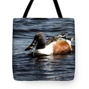 Northern Shoveler Tote Bag