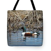 Northern Shoveler Swim Tote Bag